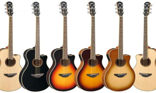4 Reasons Why the Guitar is the Best First Instrument